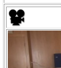 To download a sample video click on the girl to go to her video page, then look for this symbol at the top and click it