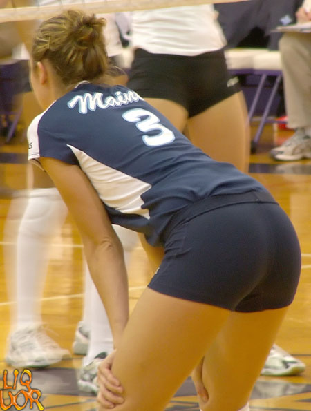 College Volleyball Ass